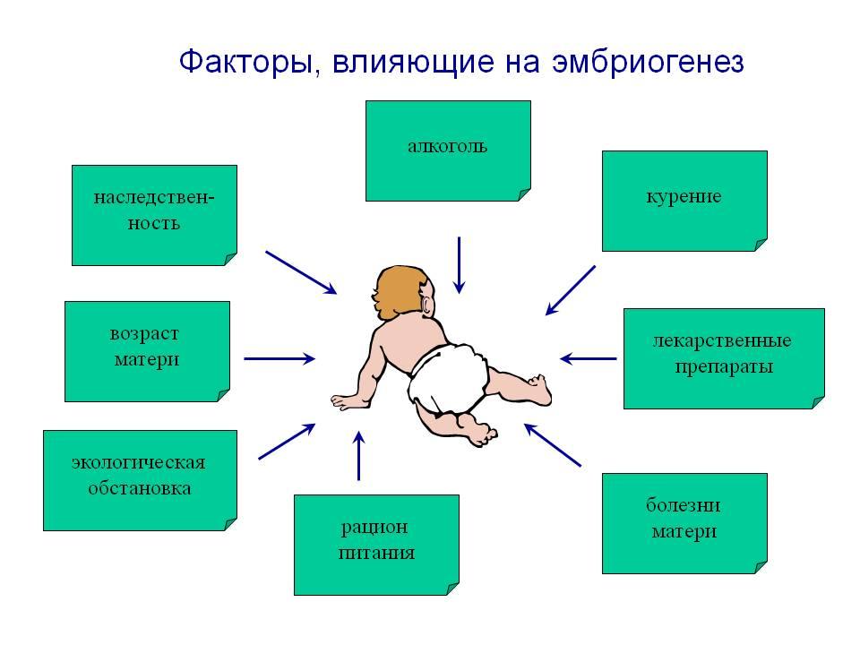 Информация об алкоголизме и наркомании для детей
